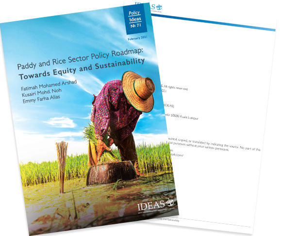 Policy Paper No 71 - Paddy and Rice Sector Policy Roadmap: Towards Equity and Sustainability